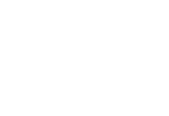 trion-properties-logo